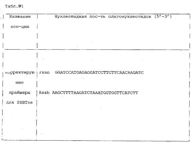 Химерный белок для невирусного трансгенеза, включающий днк-связывающий домен ssbtne и сигнал ядерной локализации vird2
