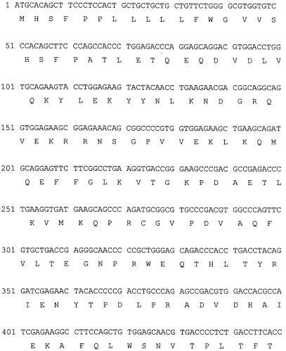 Ген ммр1opt металлопротеиназы 1