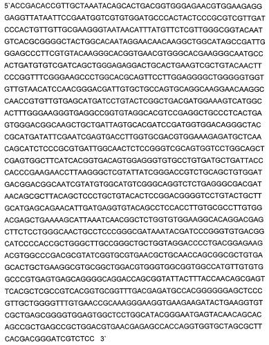 Транссиалидазы из trypanosoma congolense