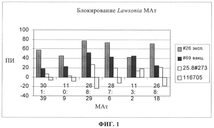 Способ диагностики lawsonia intracellularis