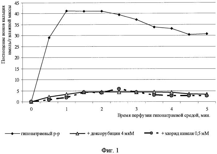 Способ одновременной регистрации na+-зависимых потоков ca2+ и функционального состояния целого изолированного сердца в эксперименте