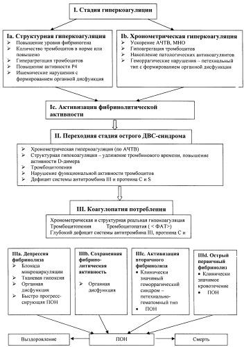 Способ оптимизации диагностики стадий острого синдрома диссеминированного внутрисосудистого свертывания крови
