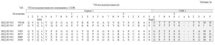 Человеческие анти-cd38-антитела и их применение