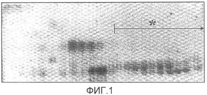 Композиция для снижения экссудации белков сыворотки