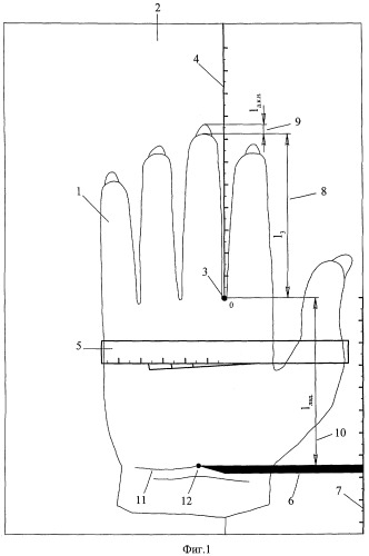 Способ обмера кисти для изготовления перчаток