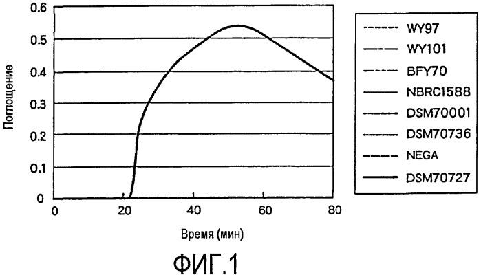 Набор праймеров для использования при детекции дрожжей рода dekkera и дрожжей рода brettanomyces