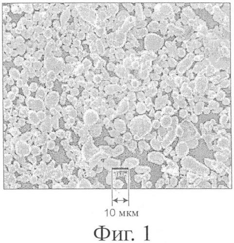 Покрытие и способ формирования покрытия