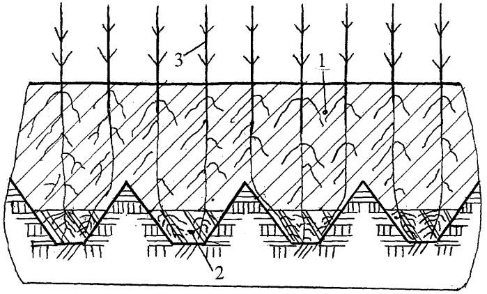 Способ комплексной мелиорации тяжелых слабоводопроницаемых почв