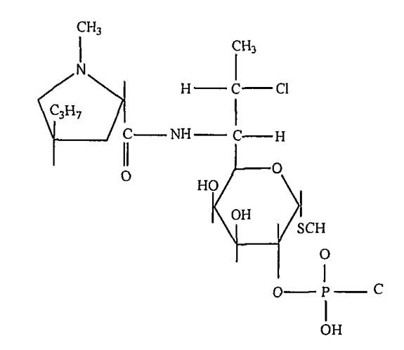 Фармацевтические композиции местного применения, содержащие противоугревое соединение и антибиотическое соединение