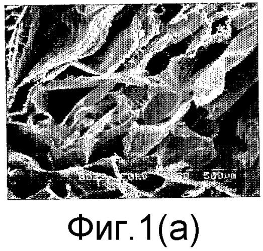 Тонкопленочная многоячеистая структура, изготовленная из коллагена, элемент для регенерации ткани, содержащий ее, и способ ее получения