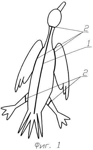 Способ выделки и упрочнения шкур птиц для изготовления меховых изделий верхней одежды