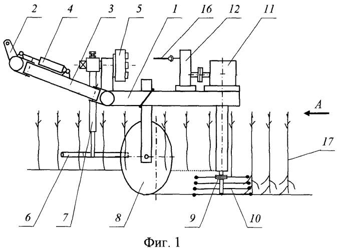 Устройство для раскрытия корневой системы вегетативно размножаемых подвоев
