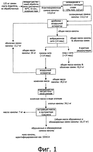 Производство муки из масличных семян