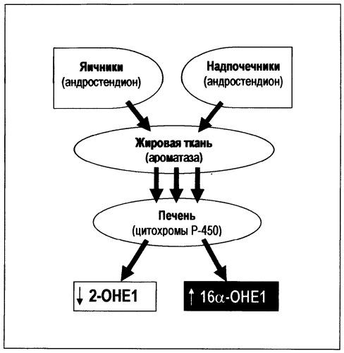 Фармацевтическая композиция для лечения и профилактики аденомиоза