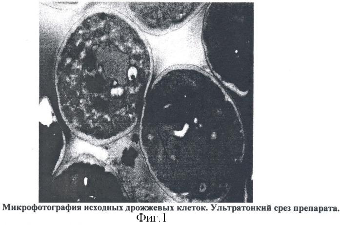Профилактический антибактериальный препарат и способ его получения