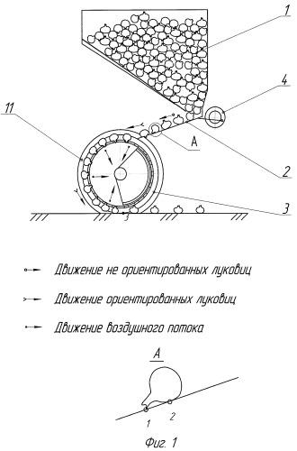 Вибрационно-пневматический высаживающий аппарат для ориентированной посадки лука-севка