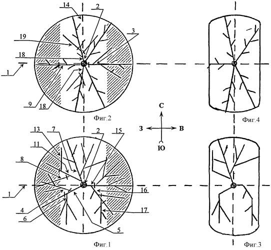 Способ формирования крон плодовых деревьев на склонах предгорий