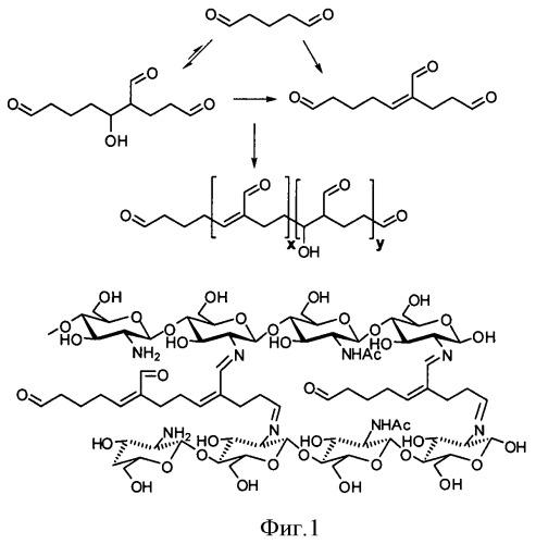 Новые сшивающие реагенты для получения биосовместимых материалов на основе хитозана
