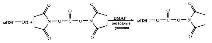 Дендример-пэг с четырьмя ветками для конъюгирования с белками и пептидами