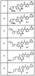 Амидное производное и лекарственное средство