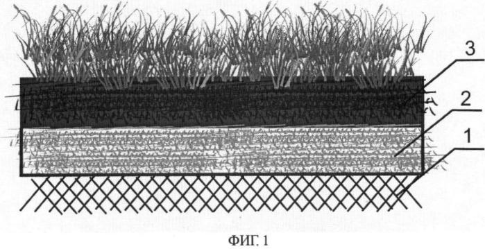 Способ получения дернины для создания газонов