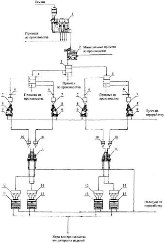 Линия получения ядра из семян подсолнечника для кондитерских изделий