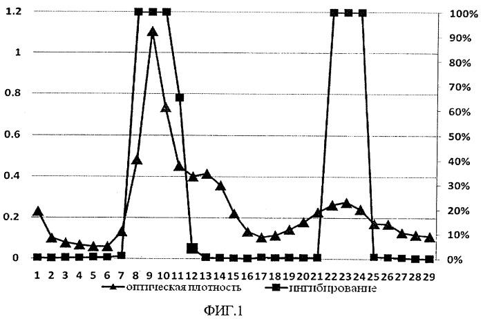 Способ получения ингибитора коллагеназы с противоопухолевым действием из гепатопанкреаса камчатского краба