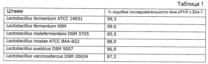 Lactobacillus fermentum ess-1, dsm17851, и его применение для лечения и/или профилактики кандидоза и инфекций мочевых путей
