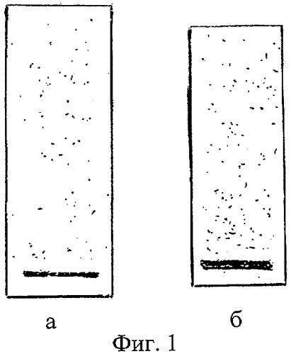Способ определения фракций модифицированных липопротеинов крови