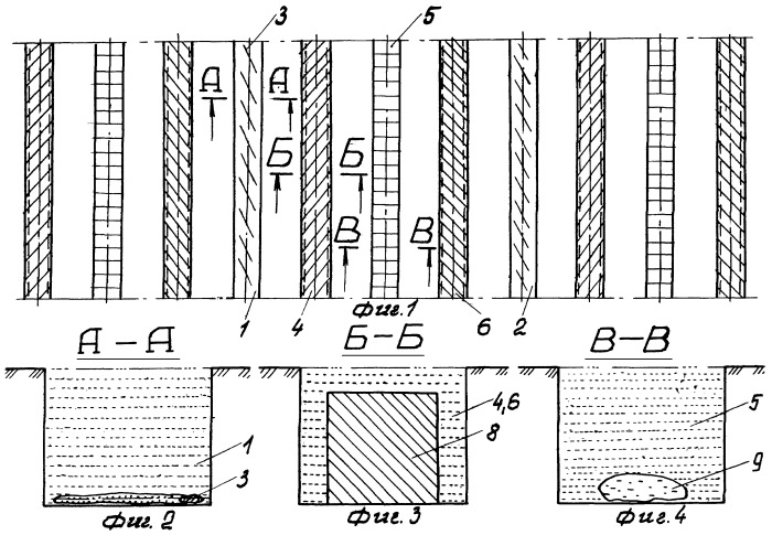 Способ создания долговременных плантаций мезогалофитов на деградированных орошаемых почвах рисовых чеков