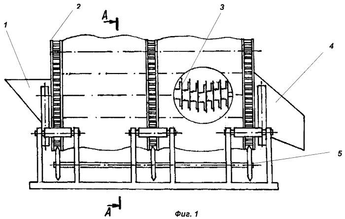 Устройство для транспортирования и очистки корнеклубнеплодов