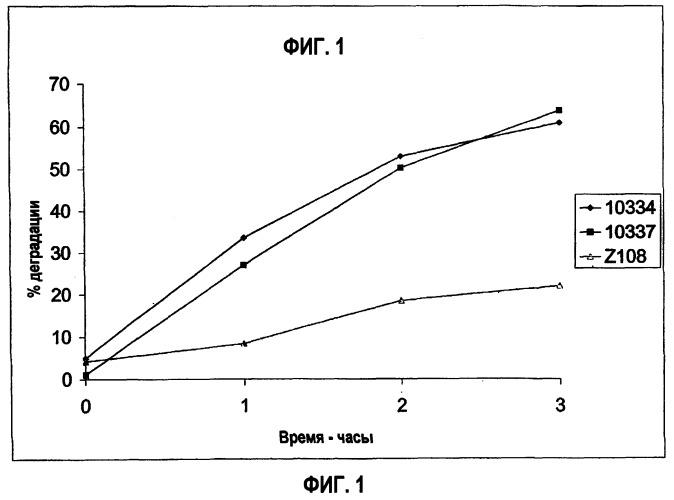Способ выращивания продуцирующей лизин грамположительной бактерии для доставки биологически активных соединений жвачным животным, кормовая добавка (варианты) и способ кормления жвачных животных