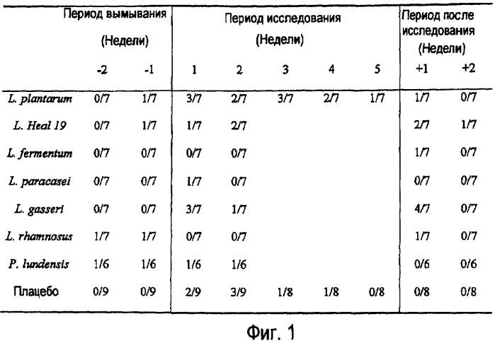 Применение lactobacillus для лечения аутоиммунных заболеваний