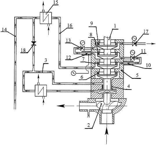 Главный циркуляционный насосный агрегат