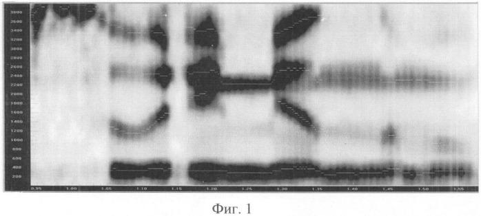 Способ идентификации говорящего по фонограммам произвольной устной речи на основе формантного выравнивания