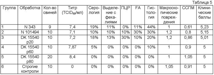 Lawsonia intracellularis европейского происхождения и вакцины, диагностические агенты на ее основе и способы их применения