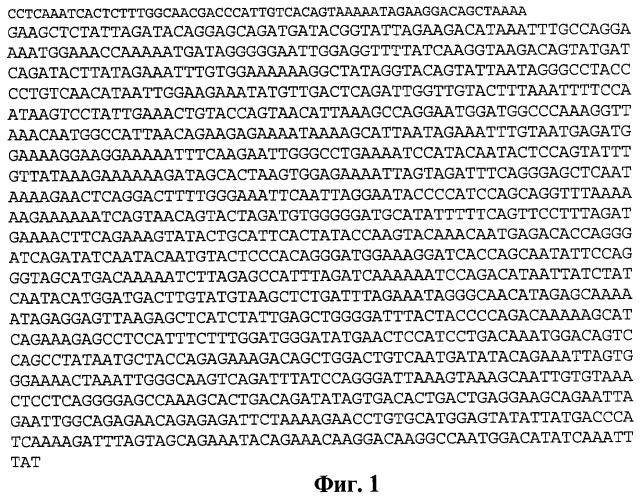 Штамм а1.ru.09ru2065 вируса иммунодефицита человека 1 типа субтипа а, используемый для диагностики и изучения эффективности лечебно-профилактических и вакцинных препаратов