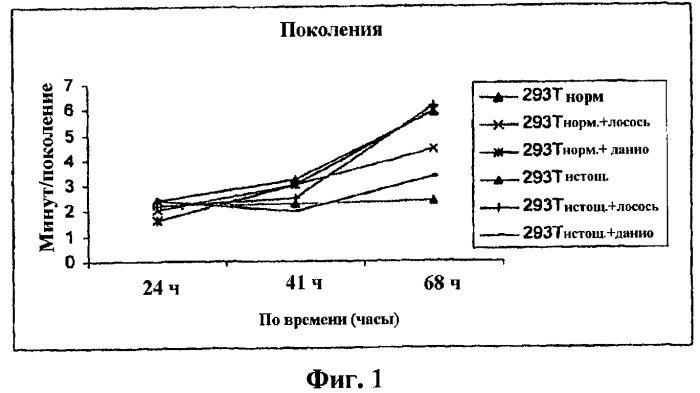Введение клеток и клеточных экстрактов для омолаживания