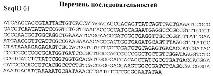 Способ получения экспрессионного плазмидного вектора, обладающего повышенной стабильностью наследования в клетках escherichia coli