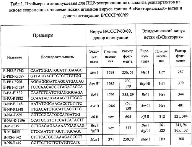 Вакцинный штамм вируса гриппа в/60/брисбен/08/83 для производства живой гриппозной интраназальной вакцины для взрослых и для детей