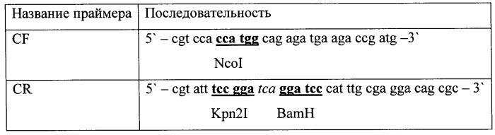 Рекомбинантная плазмида, штамм escherichia coli, химерный белок и их применение