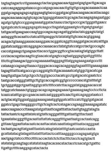 Штамм вируса - возбудителя геморрагической лихорадки с почечным синдромом для изготовления вакцинных препаратов (варианты)