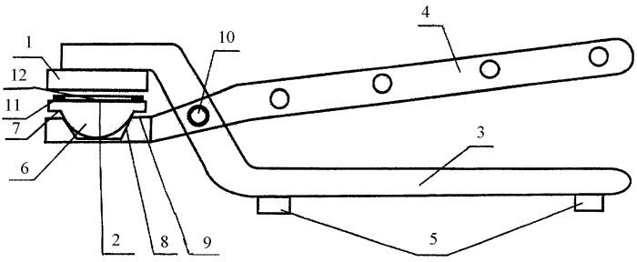 Устройство для приготовления трансплантата для хирургической коррекции искривленной перегородки носа