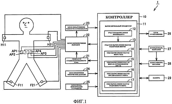 Устройство измерения висцерального жира
