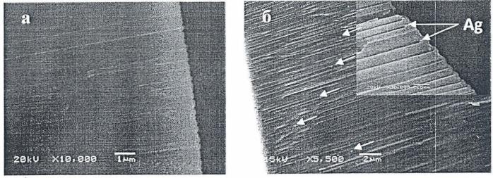 Способ формирования нанокомпозитного покрытия на пористом слое оксида алюминия