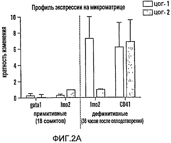 Способ модулирования роста гематопоэтических стволовых клеток