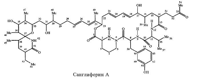 Применение санглиферина для лечения вируса гепатита с