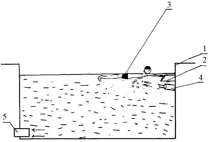Способ обучения плаванию