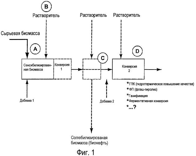Способ конверсии биомассы в жидкое топливо и специальные химикаты