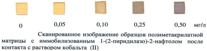 Способ определения кобальта (ii) c использованием полиметакрилатной матрицы